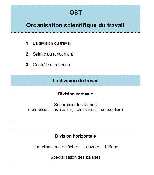 Schéma OST division du travail